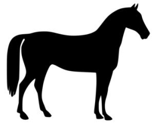 free horse and pony clip art clipart best clipart best clip rh pinterest com free clipart horses jpeg free clipart horses running