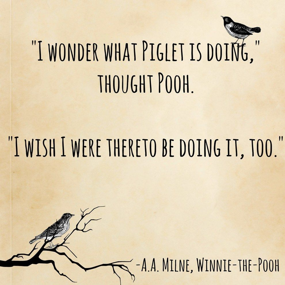 15 Book Quotes That Perfectly Describe Friendship Pooh Quotes Aa Milne Quotes Book Quotes