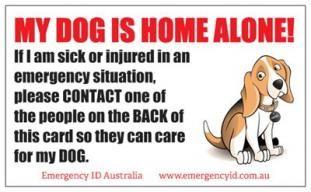 My Dog Is Home Alone Emergency Id Card Emergency Medical Alert Home Alone