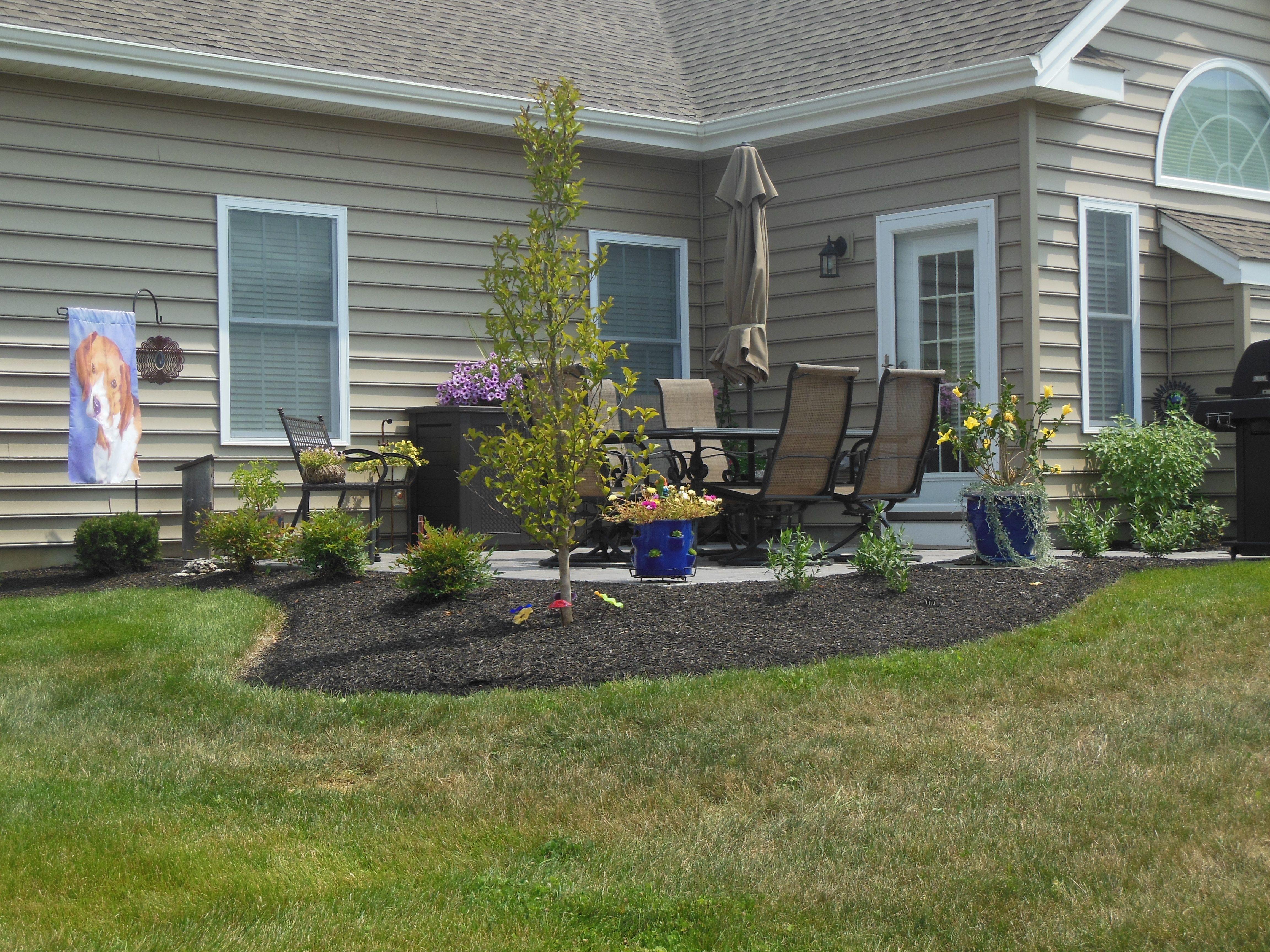 landscaping around patio ideas
