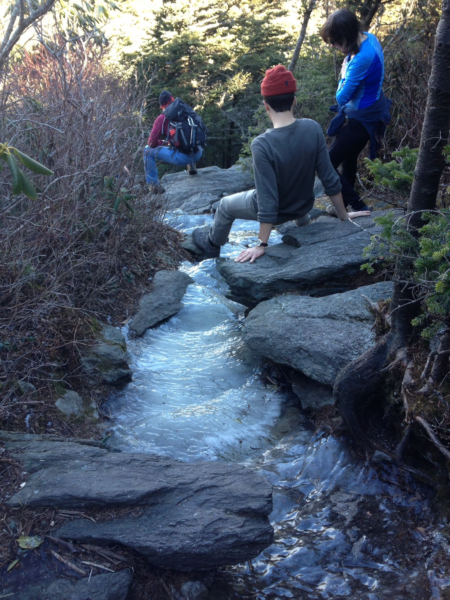 Pin by Beech Mountain on Hiking Trails Grandfather and