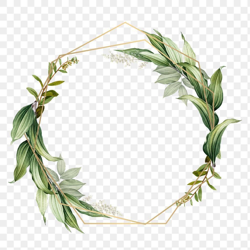 download premium png of tropical botanical frame