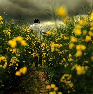 A walk in the flowers