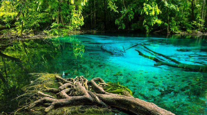 Emerald Pool + Hot Springs, Ao Nang Tours, Ao Nang, Thailand ∴ BigTourKrabi.com