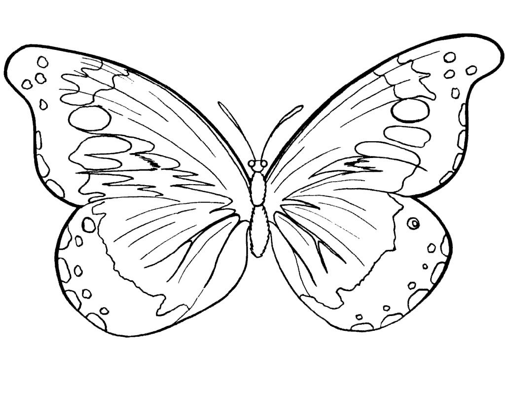 Butterfly Coloring Pictures Printable Full Documents