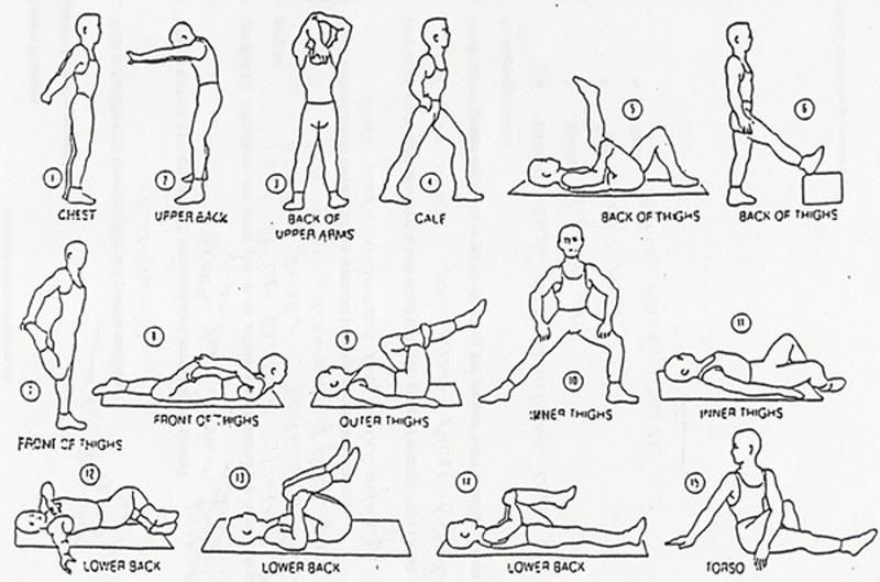back stretches diagrams engine mechanical components Back Stretches Diagrams exercises for back pain with diagrams