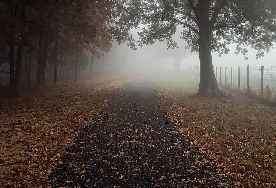 An early morning stroll leads into a dense fog at Mahr Park, Madisonville, Kentucky. Underfoot freshly fallen leaves carpet the asphalt trail.