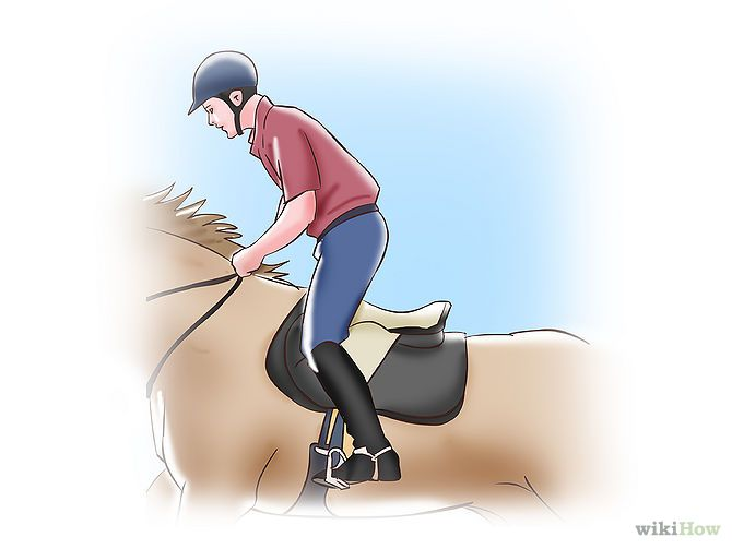 english horse riding tips - Google Search
