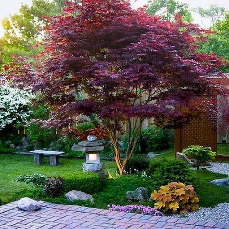 45 Wonderful Modern Front Yard Landscaping Ideas Frontyards