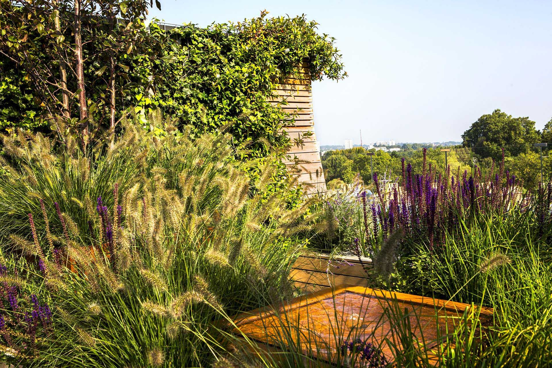 adolfo harrison / allsop place rooftop garden, regent's park