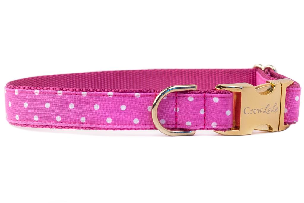 Fuchsia Dot Belle Bow Dog Collar Cutie Put Tootie Bows Dots Custom Items