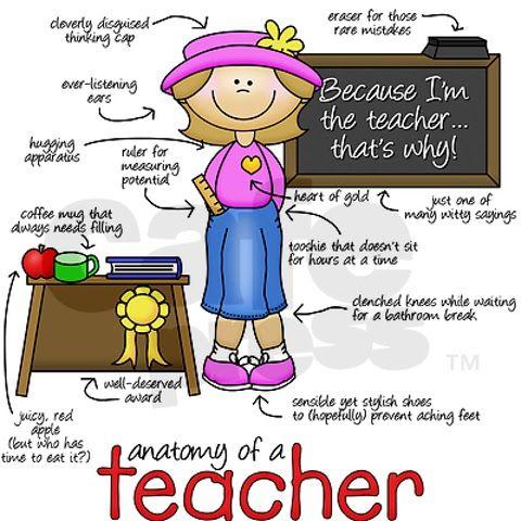 Anatomy Of A Teacher Drucken Pinterest Anatomy Teacher And