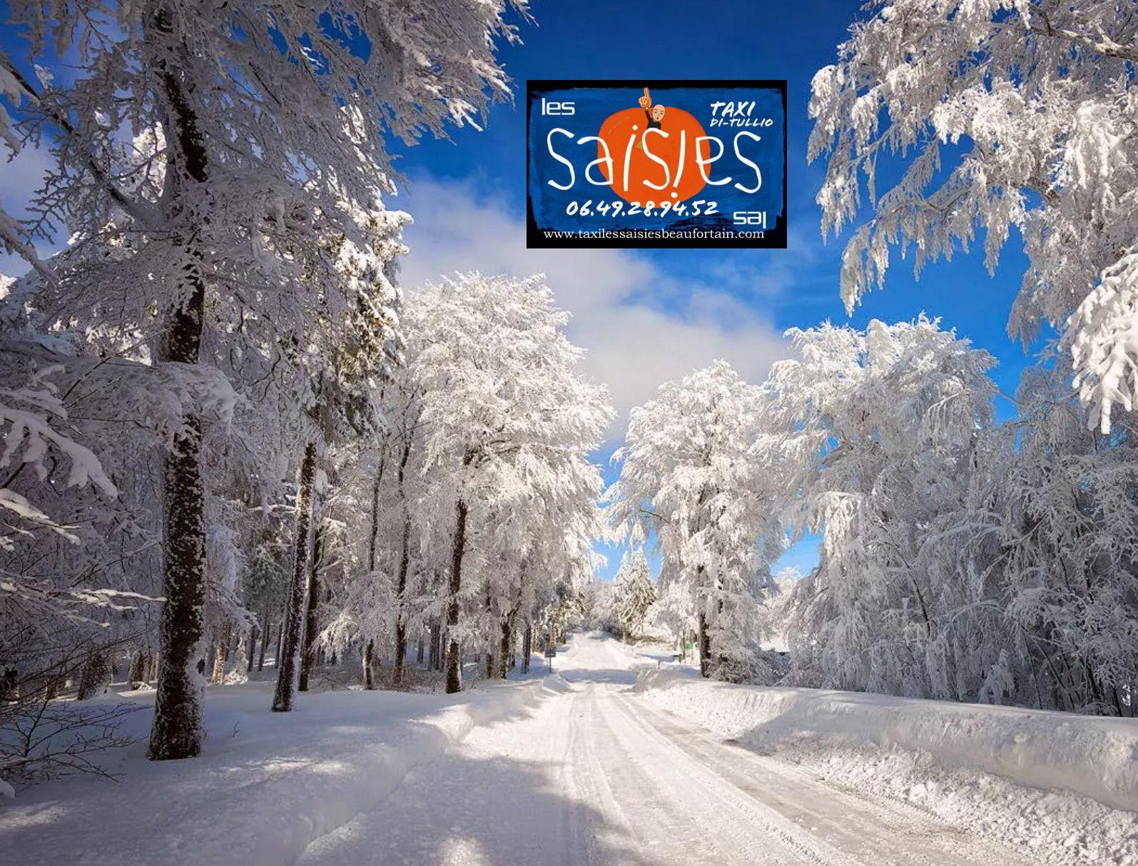 Les Saisies Village Tourisme Skiing Outdoor Taxi