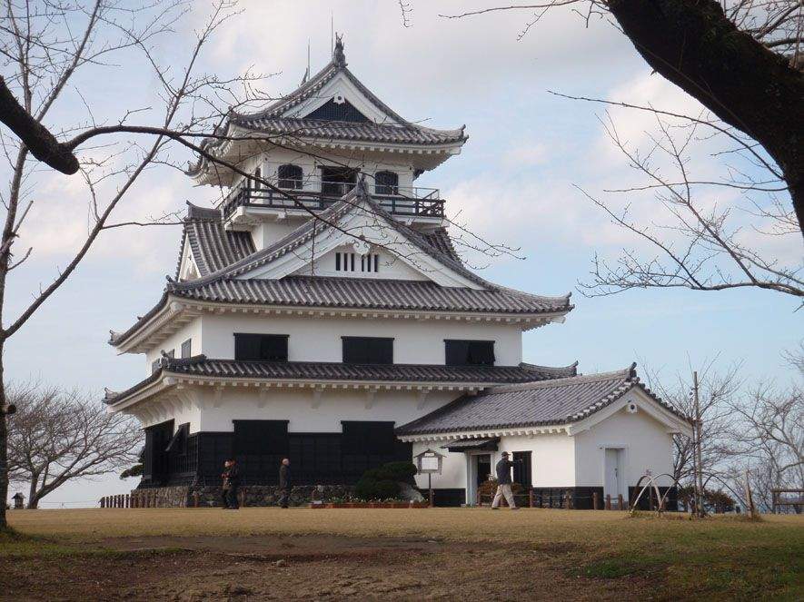 Tateyama castle (2010)