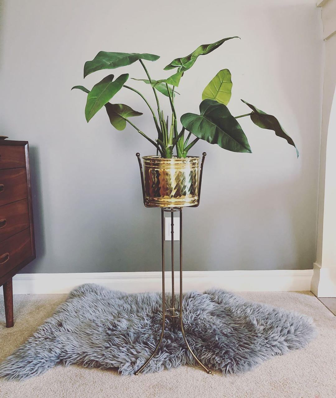 Vintage Brass Plant Stand Brass Pot This Fantastic Set Is Up For Grabs Today Tripod Plant Stand With Ball Tip
