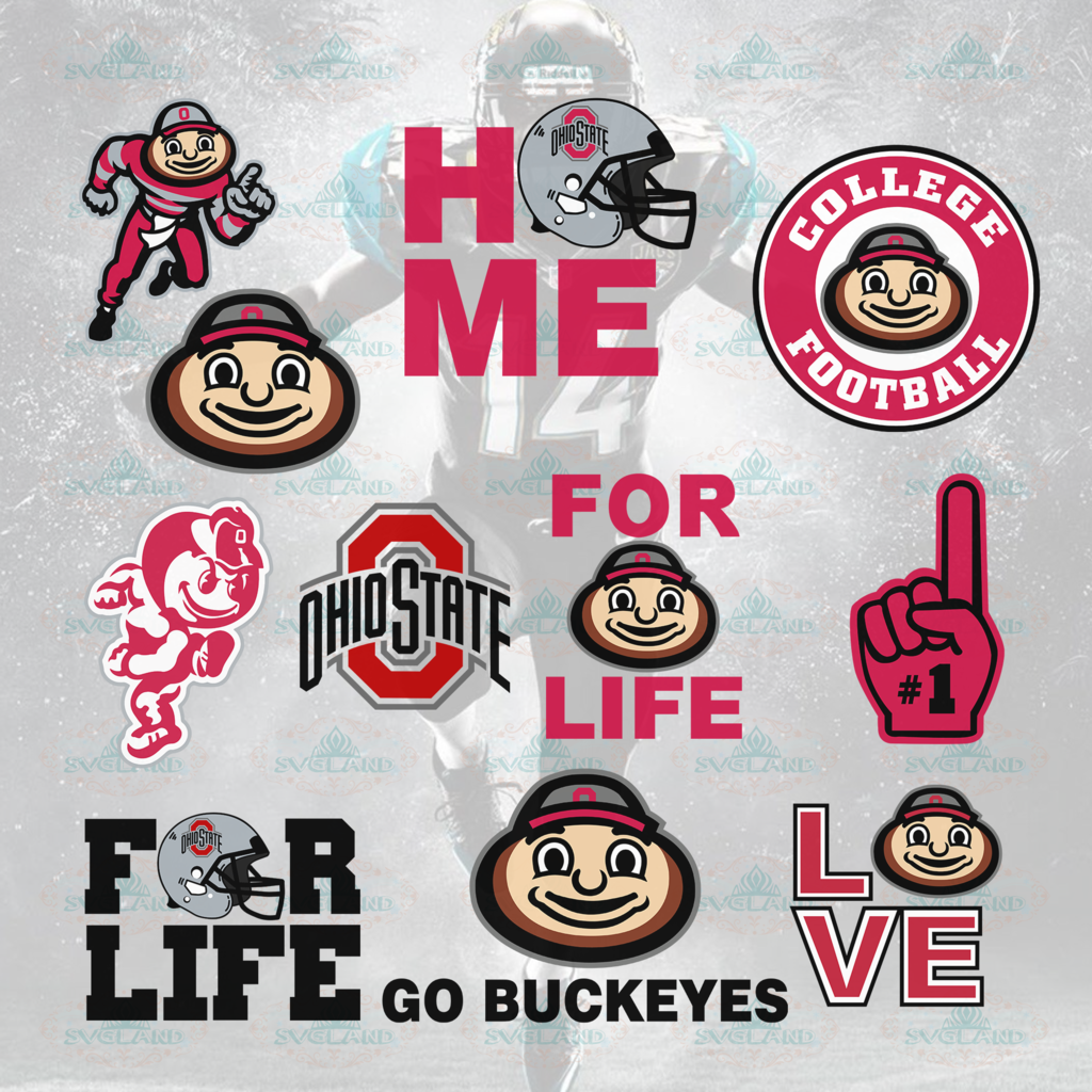 Ohio state buckeyes, ohio state football, buckeyes, ohio state, ohio state buckeye
