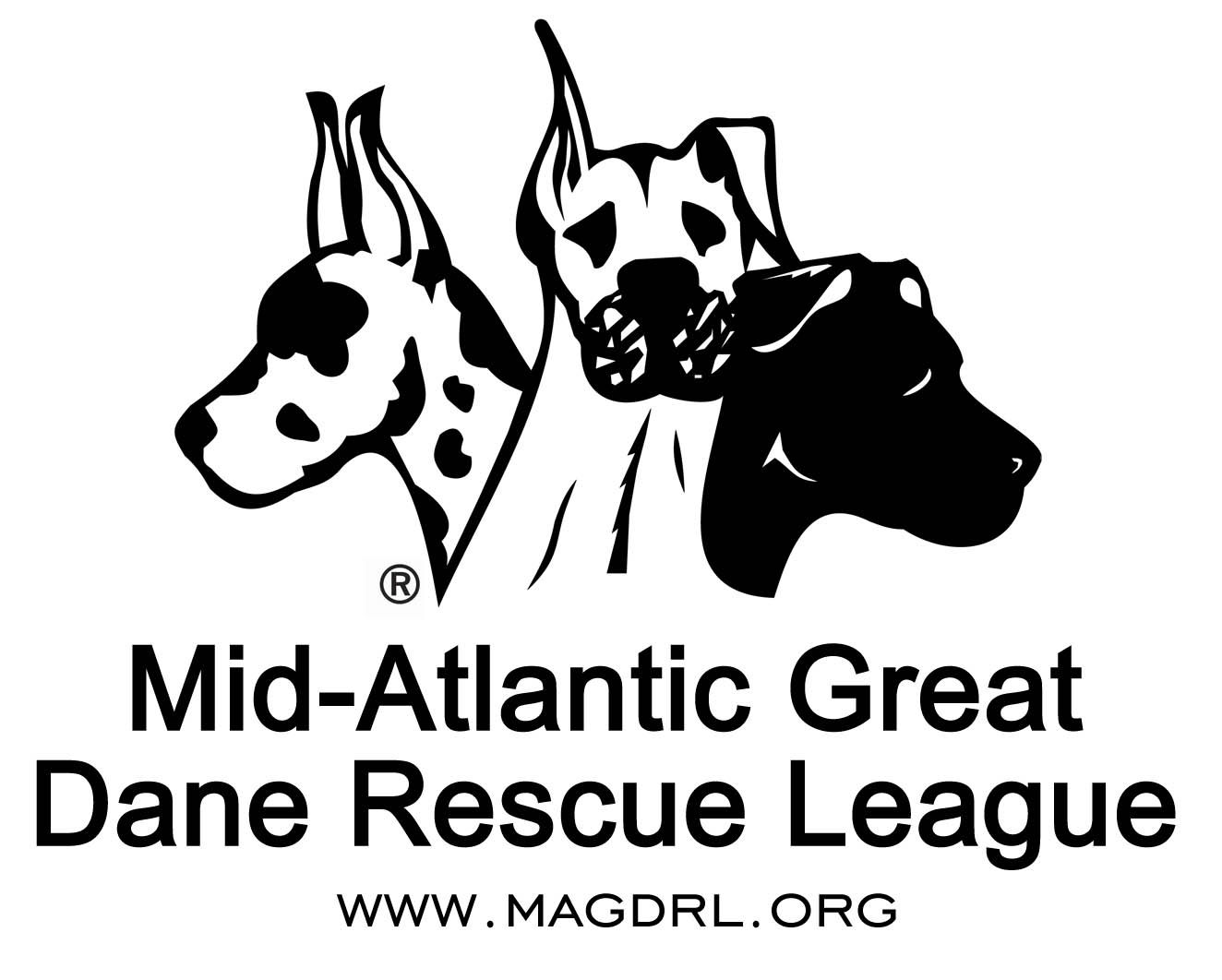 Mid Atlantic Great Dane Rescue League Magdrl Helps Danes And