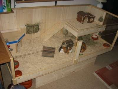 erh htes bodengehege f r meerschweinchen ideen f r. Black Bedroom Furniture Sets. Home Design Ideas