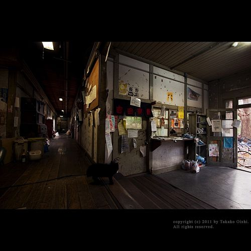 京都大學 吉田寮 寫真集(畫像あり)   建物, 建築