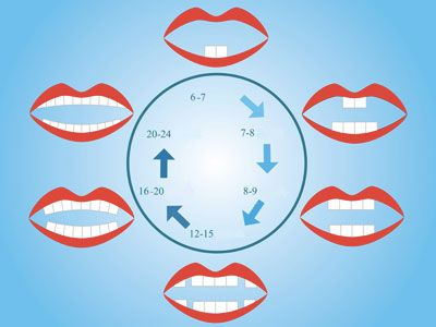 Poussée dentaire: Dents de bébé : l'ordre de sortie