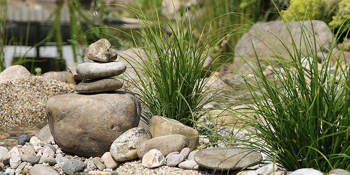 Kiesbeet kiesbeet Pinterest Kiesbeet, Steingarten und Gärten - vorgartengestaltung mit steinen und grasern