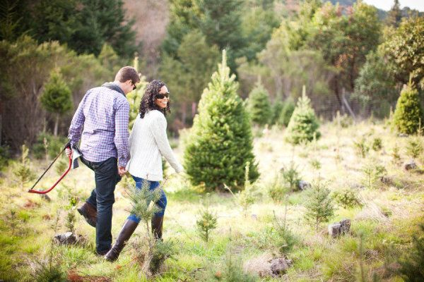 Castro Valley Christmas Tree Farm Engagement from ...