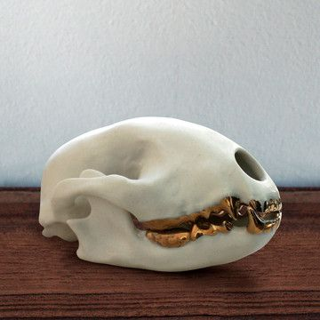 Raccoon Skull Gold, $84, now featured on Fab.