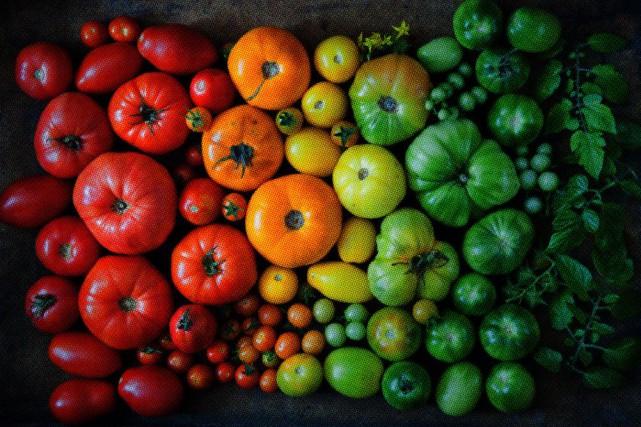 Un potager tout en couleurs | Planter des légumes, Potager ...