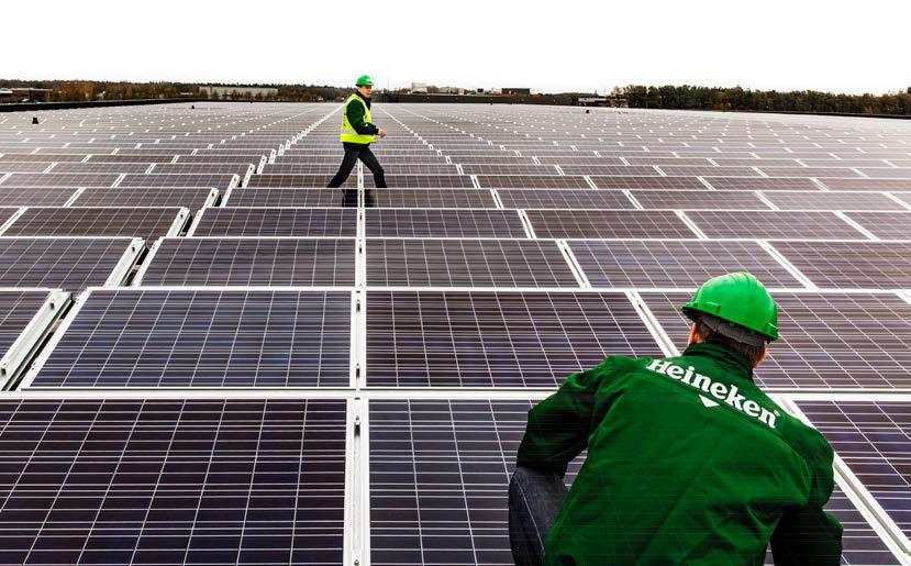 Renewable Ppas Surge Despite Missed Opportunity Re Finds