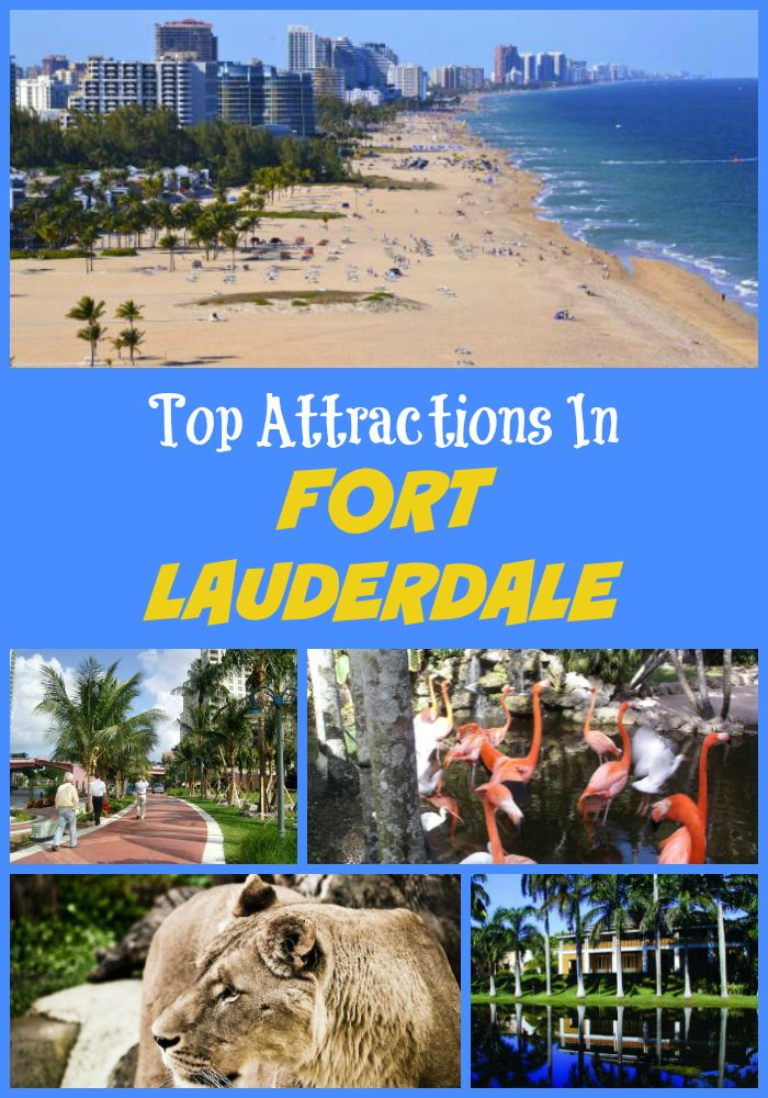 Top Fort Lauderdale Attractions And Points Of Interest In 2021 Fort Lauderdale Things To Do Fort Lauderdale Vacation Visiting Fort Lauderdale