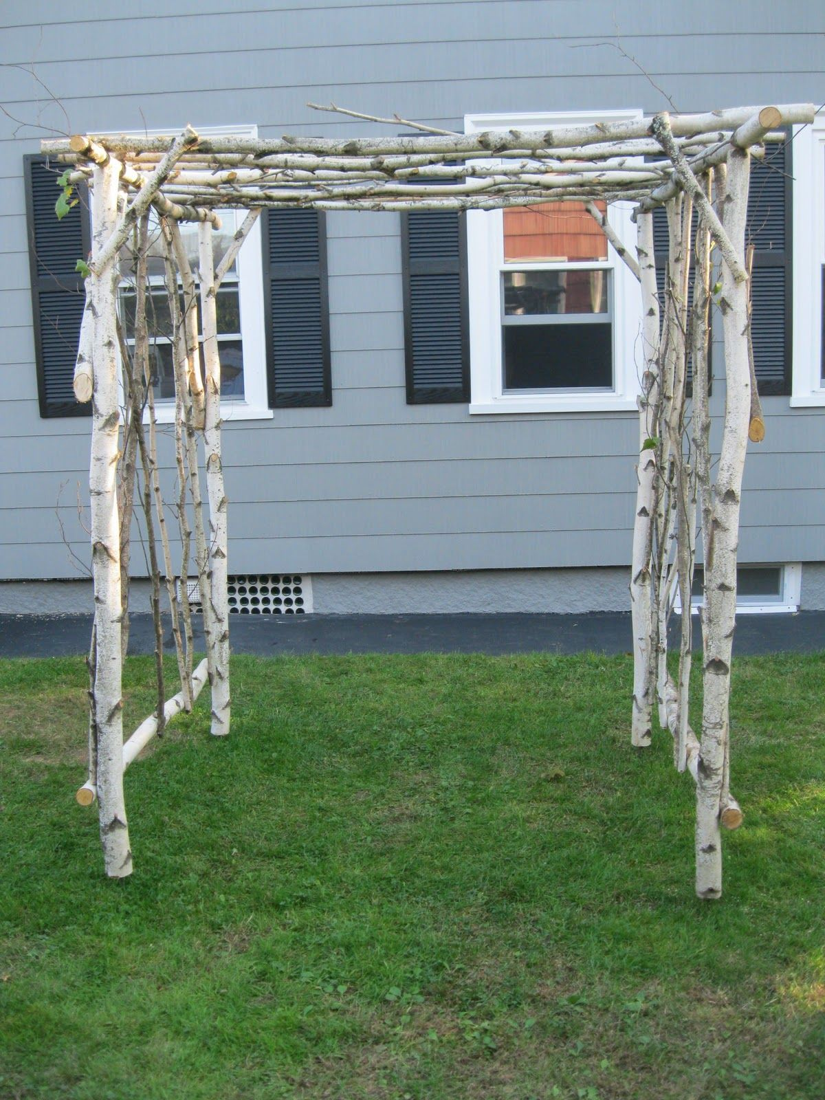 Rustic Arbors For Sale On Request Someone Wanted A Birch 400 x 300