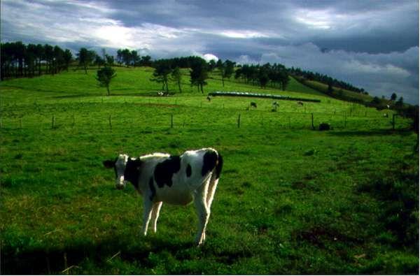 CVC. Paisajes de España. Imágenes de Asturias.
