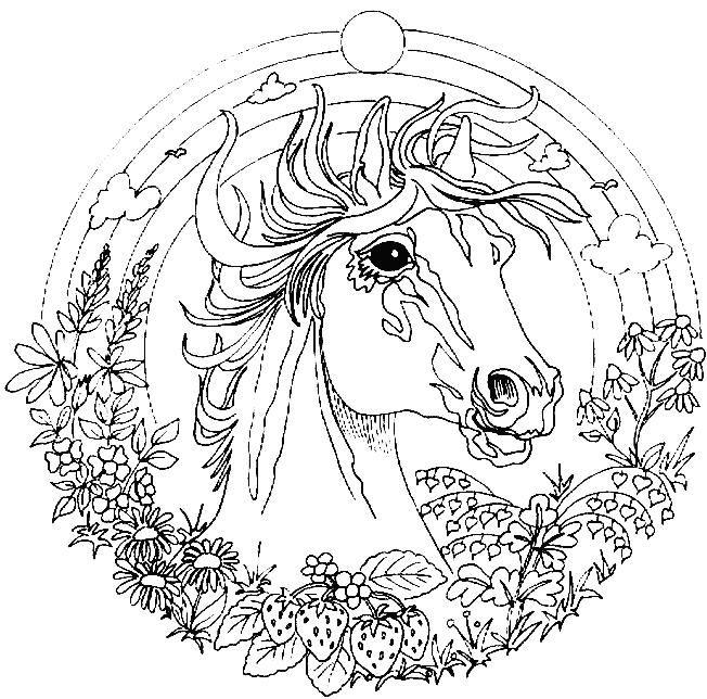 Kleurplaten Dieren Paard.Mozaiek Patroon Mandala Paard Kleurplaten Animals Horses En Colors
