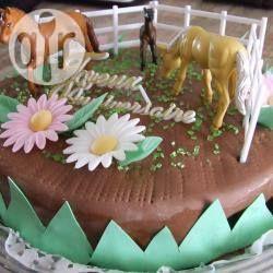 Allrecipes Deutschland Rezept Pferde Kuchen Pferdekuchen Geburtstagskuchen