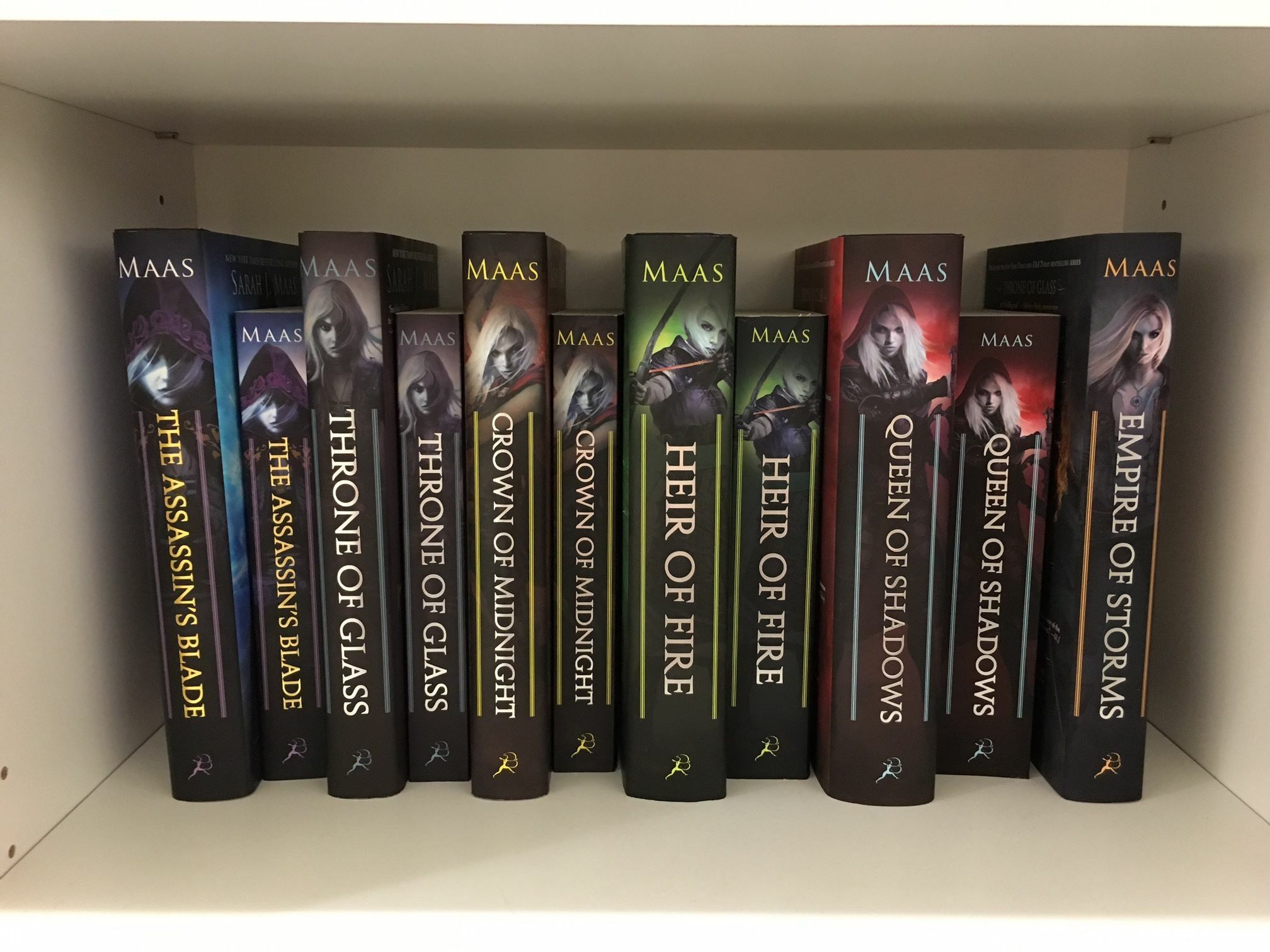 The Throne of Glass series.