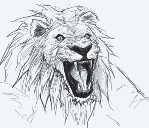 Easy Pencil Drawings Of Lions Easy Pencil Drawings Of LionsEasy Pencil Drawings Of Lions