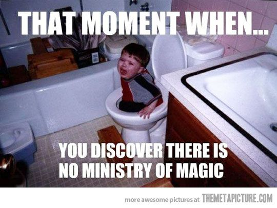 You mean..there's no Ministry of Magic?!