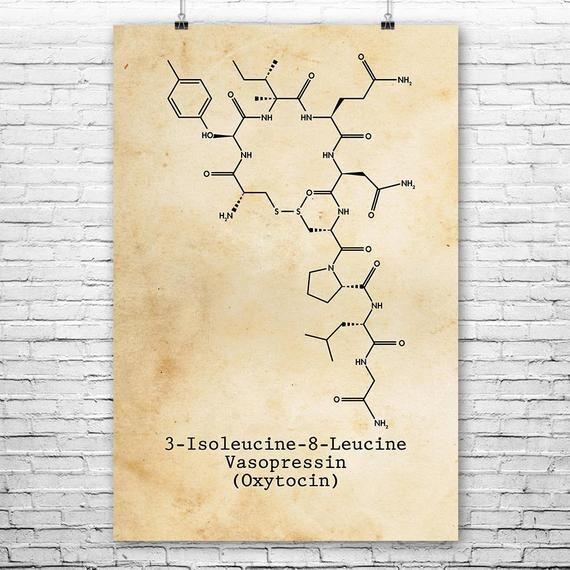 Photo of Oxytocin Molekül Poster Print, Liebeshormon, Oxytocin Kunst, Biologe Geschenk, Professor Geschenk, Neuroche