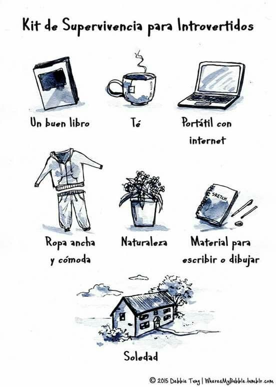 Frases Introvertido Entonces Son Introvertida