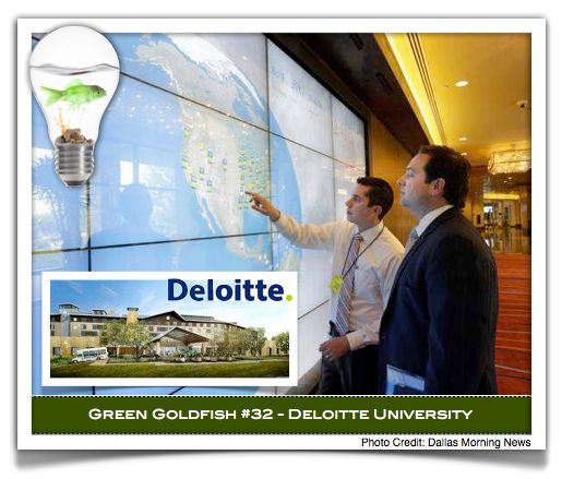 "Deloitte - Green Goldfish #32    Taken from a post by George Bradt on Forbes.com:    ""Learning represents the strategy of the company. Deloitte celebrates its expertise across the university facility from the ""story wall"" in the lobby to the ""associate finder"" that enables anyone to find anyone else in the massive facility. In many ways, the whole university is one large ""we"" space."