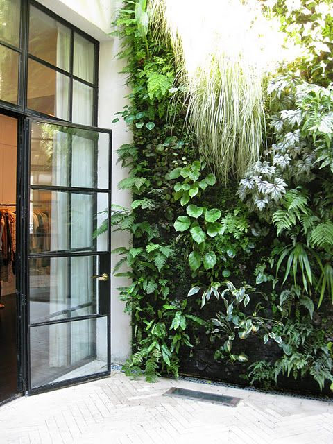 vertical garden, designed by patrick blanc Living walls