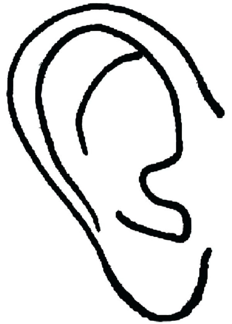 Animal ears coloring pages coloring pages for kids in for Ears coloring page