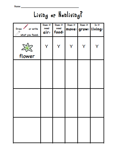 Printables Living Vs Nonliving Worksheet 1000 images about science living and non things on pinterest life cycles scavenger hunts worksheets