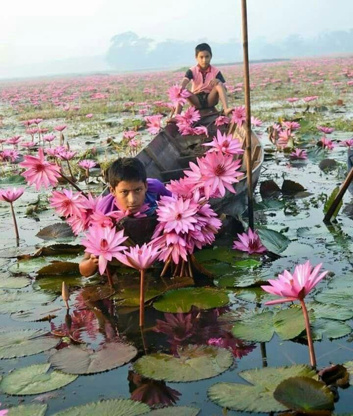 The Beauty Of Bangladesh...