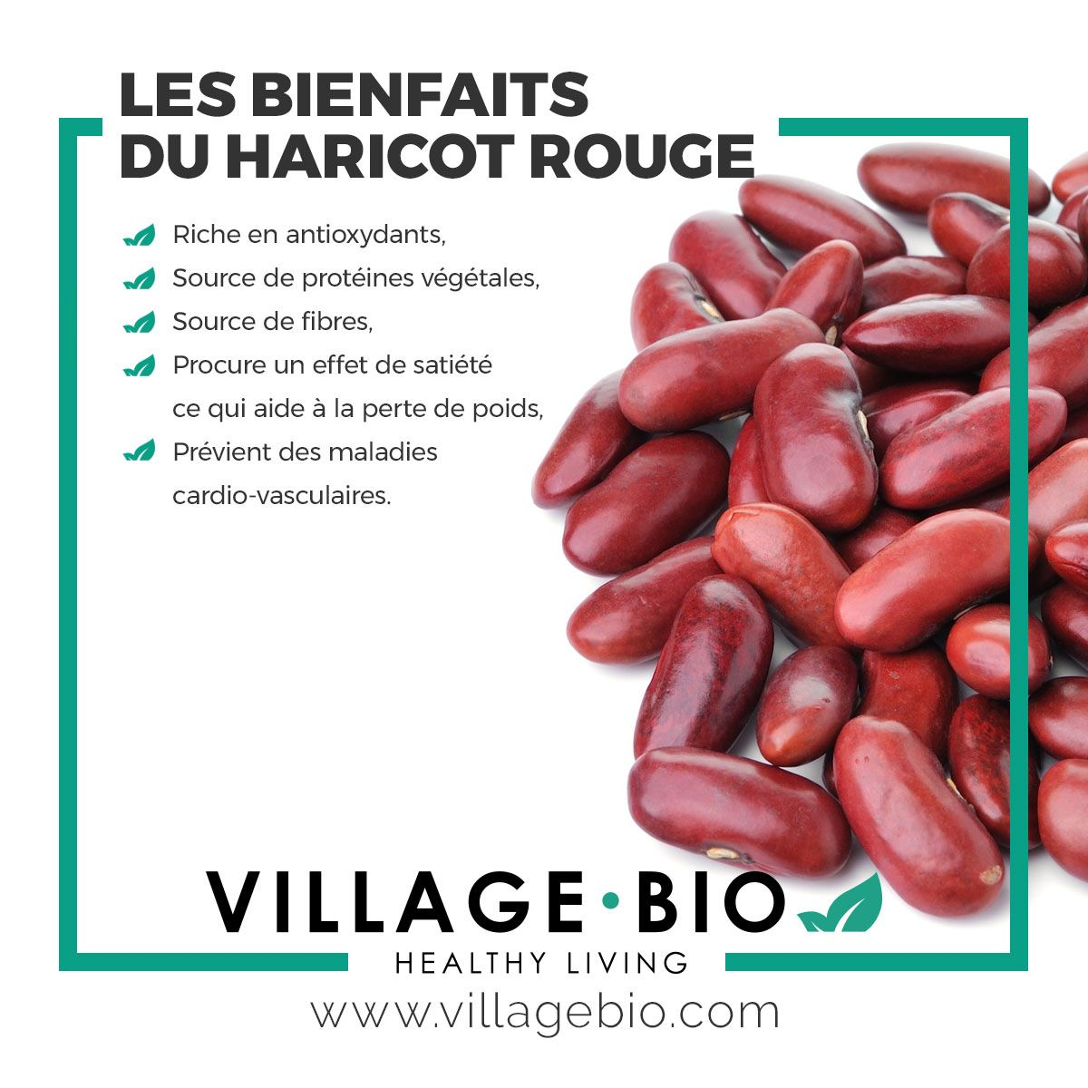 Les avantages des haricots rouges