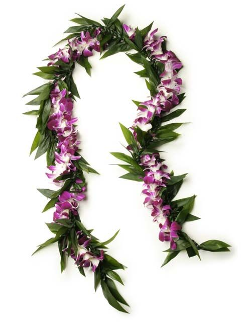 Fresh Hawaiian Orchid Leis Loose Orchid Blooms Orchid Lei Leis Flower Lei