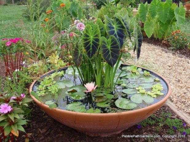 gardening ideas: excellent pebble path water gardens container ideas