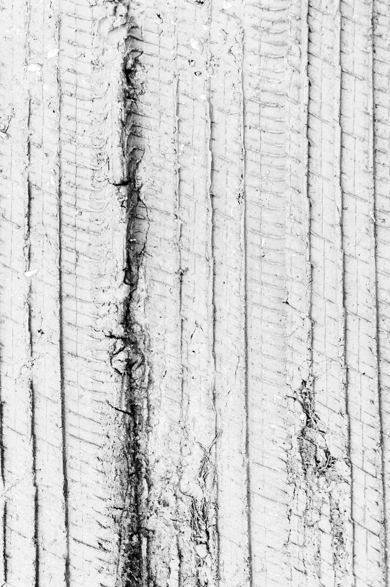 antoniopolophotography:   Untitled - Gehirn-Schmier