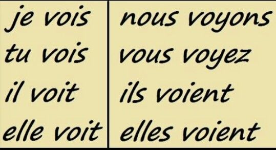 Chapter 7- The conjugation of voir French Final Project
