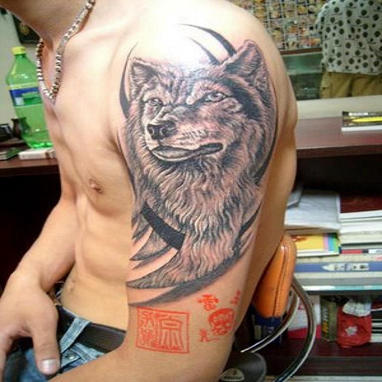 Tattoo tattoo designs and photography you can - Pics Photos Wolf Tattoo Designs For Men 4776472847910934 Jpg
